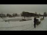 Хаски Ленд 2014(февраль)